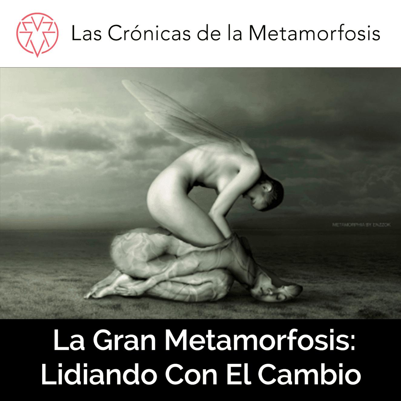 Metamorfosis: Lidiando Con El Cambio Mediante la Biomimética
